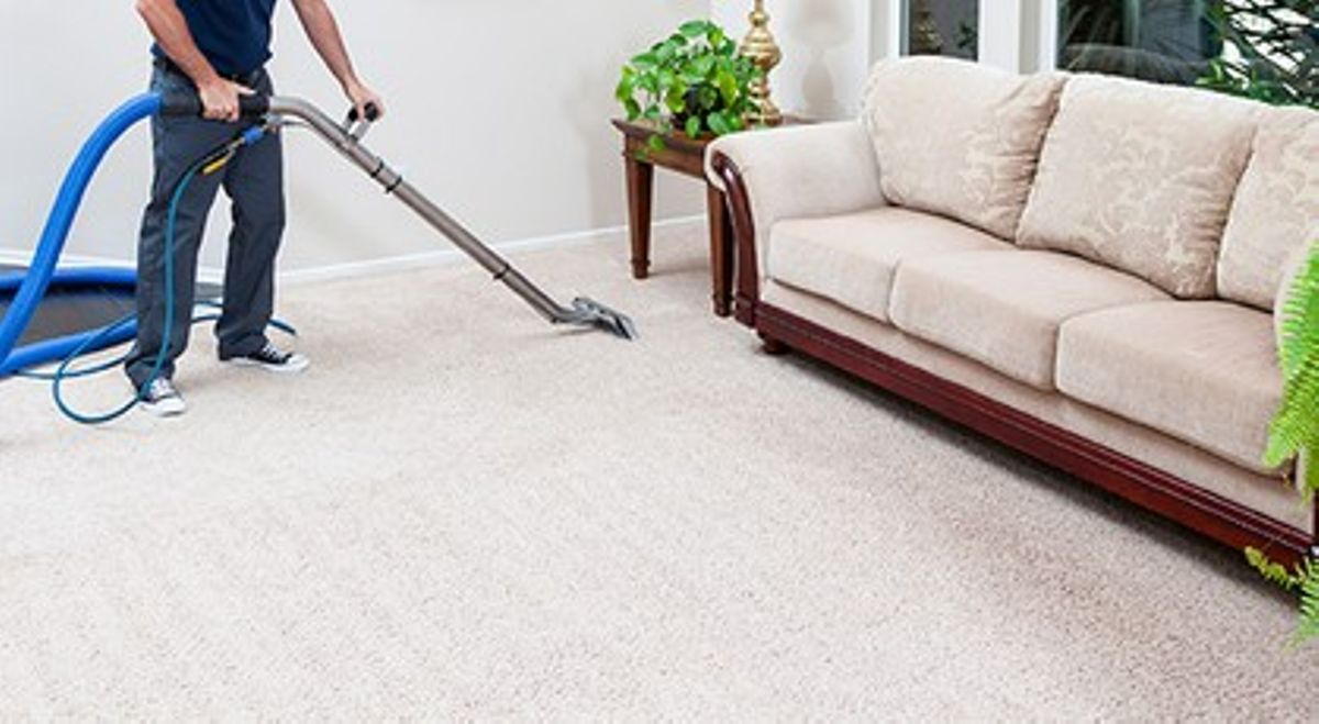 professional carpet cleaners in Fairlight
