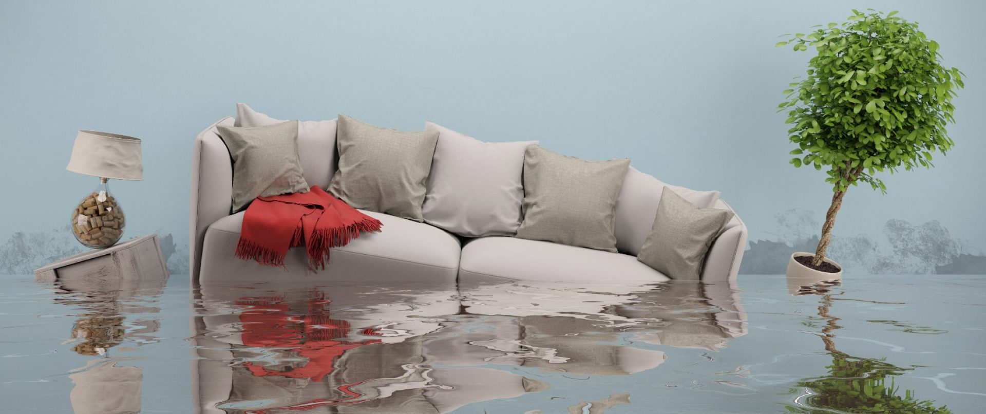 Water Damage Restoration Services in Belmore