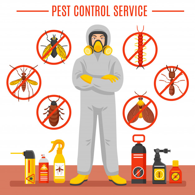 Pest Control Services in Airds