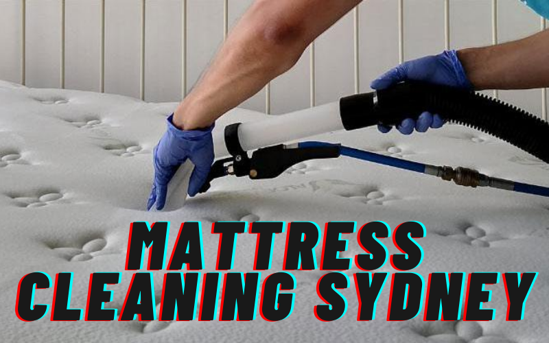 The Importance Of Professional Mattress Cleaning