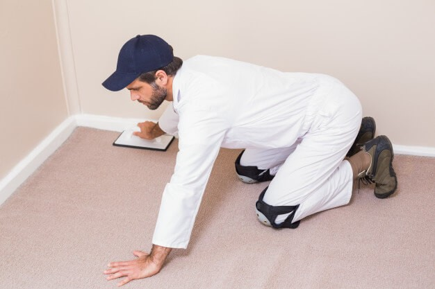 Easy Ways to Stretch Carpet
