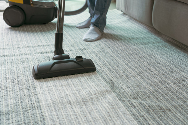 carpet sanitizing services